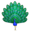 Peacock Poetry